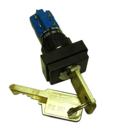 Keylock Switch 2 NO / 2 NC
